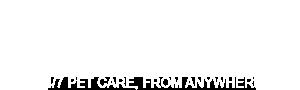 airvet_logo-white